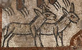 rare noah u0027s ark mosaic uncovered in ancient synagogue in israel