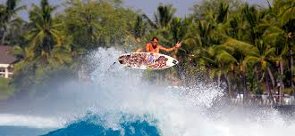 hawaii travel bureau hawaii bushbaby travel inspiring travel for