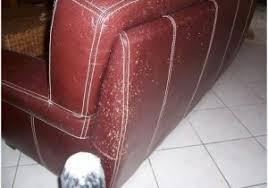 réparer un canapé en cuir reparer canape cuir griffe conception impressionnante