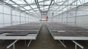 Metal Greenhouse Benches Transplant Houses Agra Tech Inc