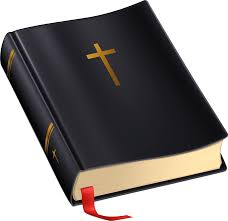 open bible transparent png stickpng