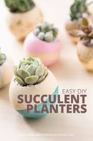 How To Make A Succulent Planter Beautiful Diy Puffy Paint Planters