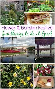 118 best epcot flower u0026 garden festival images on pinterest