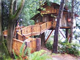 treehouses pacific northwest timbers
