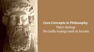 the gadfly analogy made by socrates in plato u0027s apology