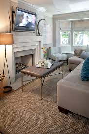 Pet Resistant Rugs Design Dilemma Best Rugs For Pet Owners Home Design Find