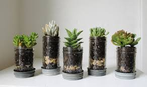 Planter S House by Mason Jar Planters With Drainage Set Of 5 Upcycled Jelly