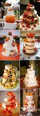 Fall Cake Decorations Best 25 Fall Theme Cakes Ideas On Pinterest Fall Cakes Fall