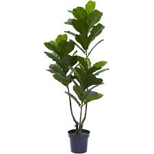 Indoor Trees For The Home by Shop Artificial Plants At Lowes Com