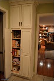 pantry cabinet ideas kitchen pantry cabinet shallow livingurbanscape org