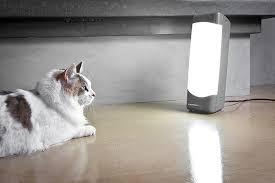 Light Box Sad Light Therapy U2013 Wellness At Middlebury