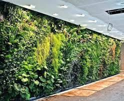 indoor wall garden vertical wall garden kits indoor wall gardens indoor wall garden