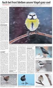 Musterhaus K Hen Die Neue Westfälische Berichtet über Neuigkeiten Aus Der