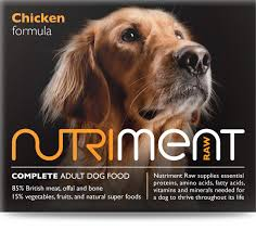 raw feeding for your dog safe and hound