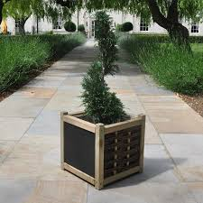 What Is A Topiary Topiary Tree Gifts For Sale Buy Online Send A Tree Gift
