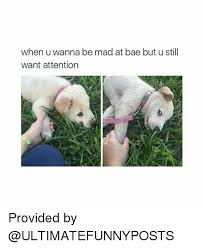 Are You Mad At Me Meme - when you re mad at bae memes mutually