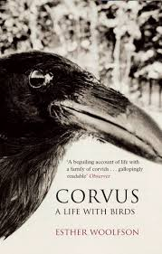 corvus a life with birds amazon co uk esther woolfson