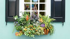 Window Planters Indoor by Add Charm With Window Boxes Southern Living