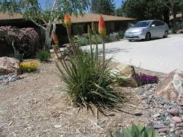 photo gallery high desert landscaping phelan ca