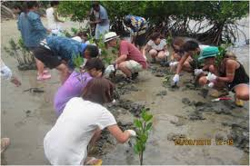 agriculture projects for students what is oisca recent news japanese university students undergo