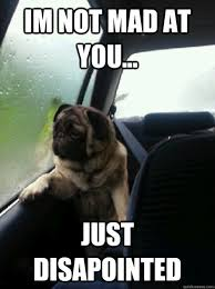 Mad At You Meme - im not mad at you just disapointed introspective pug quickmeme