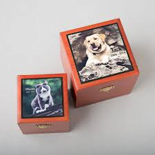 pet urn engraved photo plate for pet urn radiant heart after care for pets