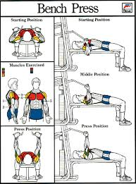 What Do Bench Presses Work Out 28 What Do Bench Presses Work Out Dynamic Bench Press And