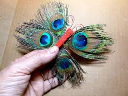 138 best images on flower peacock feathers and