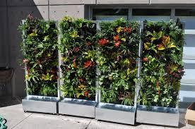 living wall planter vertical garden pots indoor living wall indoor