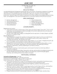 Sample Resume For Procurement Officer by Resume Sample Chief Financial Officer Page 2 13 Useful Materials