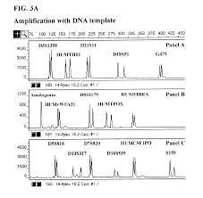 Multiplex Definition Patent Us6479235 Multiplex Amplification Of Short Tandem Repeat