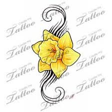 daffodils symbol of new beginnings chivalry and a single one
