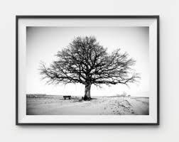 tree etsy