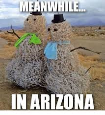 Arizona Memes - 25 best memes about meanwhile in arizona meanwhile in