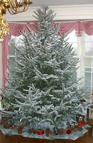 stunning ideas christmas tree spray how to paint an artificial