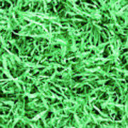 green paper easter grass green paper easter grass background photograph by hermes furian