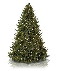 balsam hill color clear lights artificial christmas trees lights christmas ornaments balsam