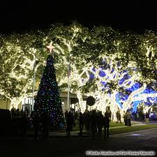 Christmas Lights Texas Christmas Tree Books Cupcakes And Cats Chasing Chipmunks