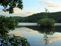 best swimming holes near nyc you can get to by public transportation