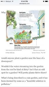 native plants of ohio 15 best rain garden images on pinterest rain garden ohio and