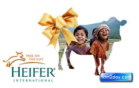 heifer international heifer international launches 23 8m project in nepal ktm2day com