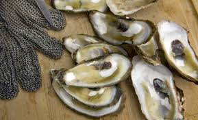 photos of thanksgiving oyster recipes