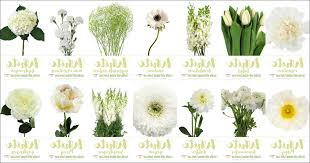 wedding flowers types white wedding flowers types wedding inspiration