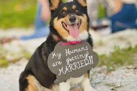 how to announce your engagement in the 21st century unique