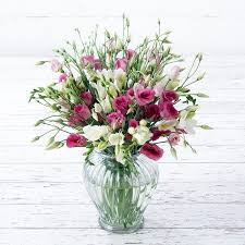 cut flowers eustoma freesia cut flowers