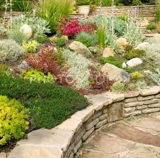 Rock Gardens On Slopes Rock Garden On Gentle Slope With Plants My Slope Is Steeper And
