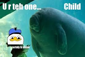 Manatee Meme - pls overlord manatee know your meme