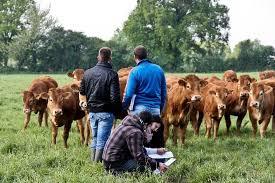 l apprentissage agricole dans les hauts de version longue cfa agricole de l aisne cfa agricole de l aisne