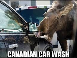 Canadian Meme - meanwhile in canada top 10 funny pics and memes youtube