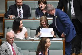 seconds of summer a team mp labor mp susan lamb breaks down in parliament daily mail online